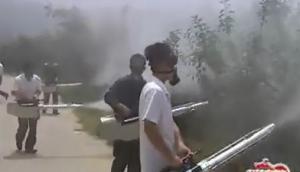 江苏南通宏大烟雾机作业视频