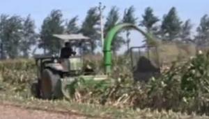中农博远4QZ-8青贮收获机作业视频