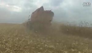 天人割臺羅馬尼亞收獲現場作業視頻