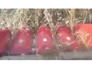 天人玉米收獲機TR9988作業視頻