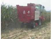 豪丰4YZX-3型自走式玉米收获机作业视频