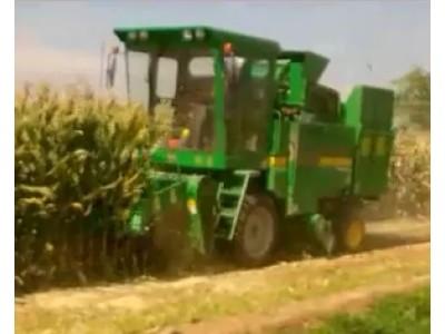 時風玉米收割機4YZP-3B田間試驗視頻