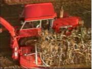 德国冠军牌青贮收割机C1200作业视频-北京国科诚泰农牧设备有限公司