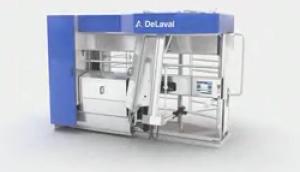 利拉伐全自动机器人挤奶系统作业视频