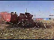 新疆牧神玉米收割机作业视频