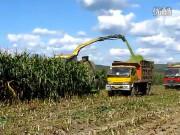 德国KRONE BIGx700青贮收割机作业视频