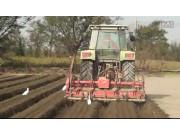 道依茨法尔拖拉机起垄作业视频
