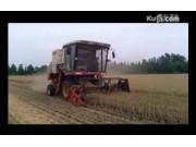雷沃谷神GE50收获机作业视频