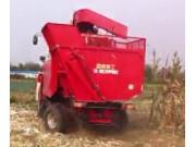 雷鸣4YZB-4玉米收获机收割作业视频