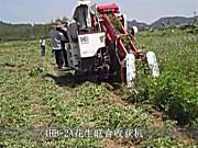 广东科利亚花生联合收割机作业视频