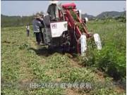 廣東科利亞花生聯合收割機作業視頻
