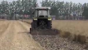 威迪秸稈粉碎還田機(反轉滅茬機)作業視頻
