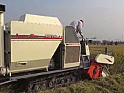 星光农机收割机作业视频