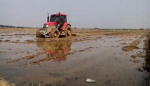 东方红LX1204打浆视频