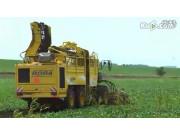 德國羅霸ROPA9行甜菜收獲機作業視頻