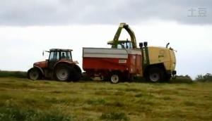 凱斯紐荷蘭804拖拉機玉米收割機作業視頻